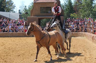Jezdecká aréna